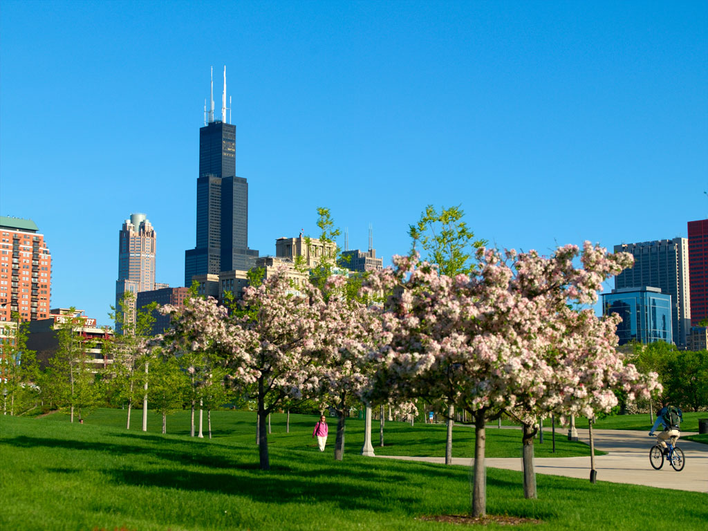53da9c24dcd5888e145c02de_spring-locations-chicago
